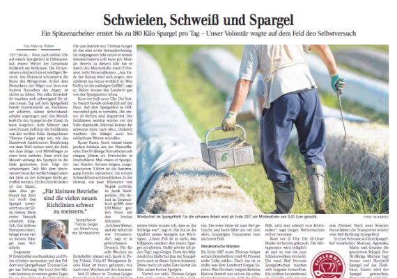 Spargelstechen im Selbstversuch |Reportage Seite 3 Schwäbische Zeitung